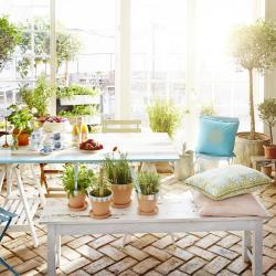 bord uterum växter sommar